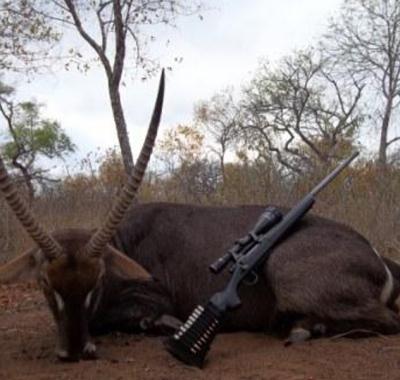 African Frontier Safaris - Trophy Room